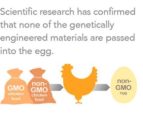 GMOs Argumentative Essay Aloja C Paulino - Academiaedu